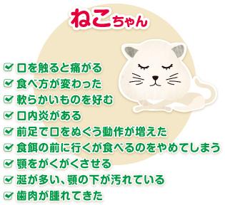 ネコちゃんの症状例